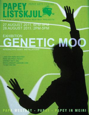 GENETIC MOO: interactive video installations