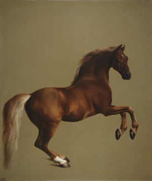 George Stubbs. all done from Nature