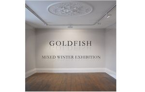 Goldfish Mixed Winter Exhibition