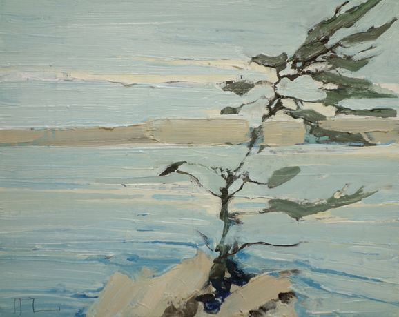 Ffiona Lewis, Pine Outcrop, Oil on board, 24x30cm.