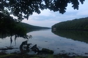 Image: Tremayne Quay on the Helford River, Lizard peninsula, courtesy Abigail Reynolds