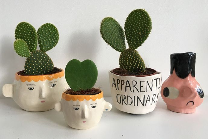 Grown & Thrown - Mix & Match, Ceramics with Plants: Image 0