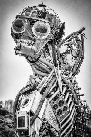 Junk Man by Andrew Gasson