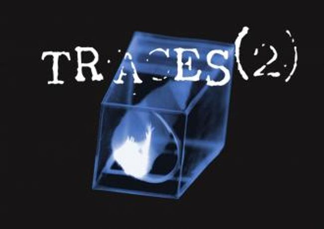 Hannah Biscombe: Traces 2: Image 0