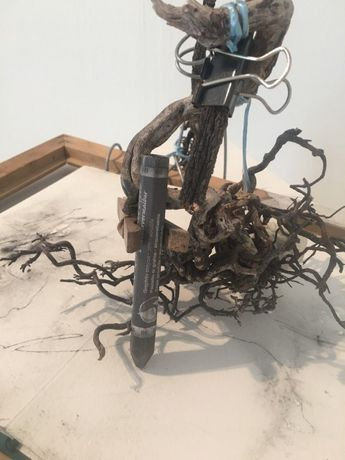 Geraldine van Heemstra 'drawing devices created from found objects that become extensions of my body.'