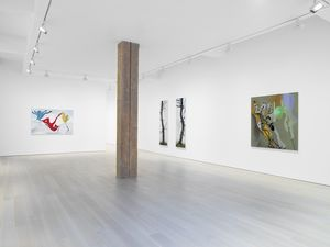 Miles McEnery Gallery, 525 West 22nd Street, New York, NY