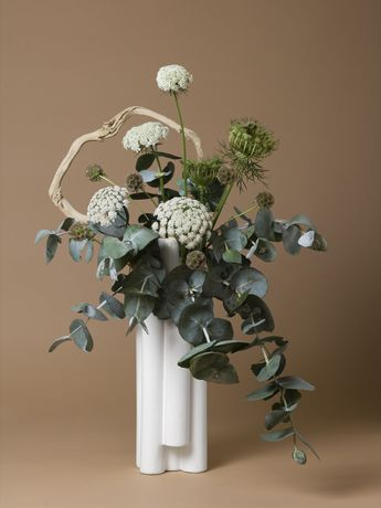 Ann Shelton, The Handmaid, Queen Anne's Lace (Daucus sp.), 2015-ongoing