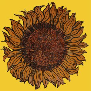 Joan Charnley - Sunflowers