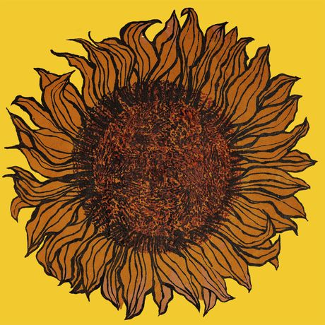 Sunflower by Joan Charnley