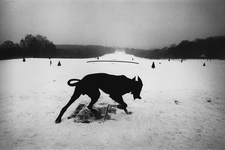 Image result for Josef Koudelka