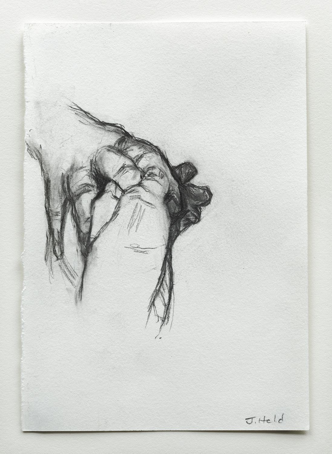 julie held forms of life small drawings exhibition at mercer