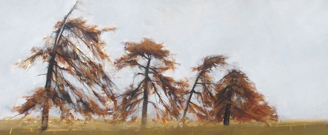 Four Larches, Anna King