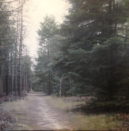 Forest 2, Oil on Panel, 100x100cm
