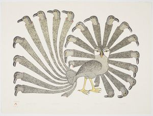 Kenojuak Ashevak. Bountiful Bird, 1986. Stonecut and stencil, 62.5 x 83.1 cm. Gift of Samuel and Esther Sarick, Toronto, 2002.  © Estate of Kenojuak Ashevak.