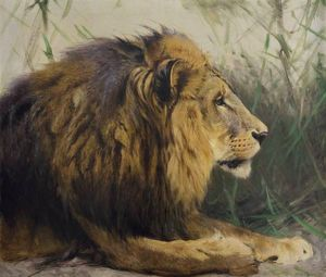King of the Animals. Wilhelm Kuhnert and the Image of Africa