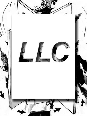 Limited Liability Corporation: Image 0
