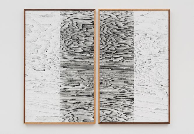 Lisa Oppenheim, Landscape Portrait (Walnut and Oak), 2015. Image courtesy the artist and The Approach, London.