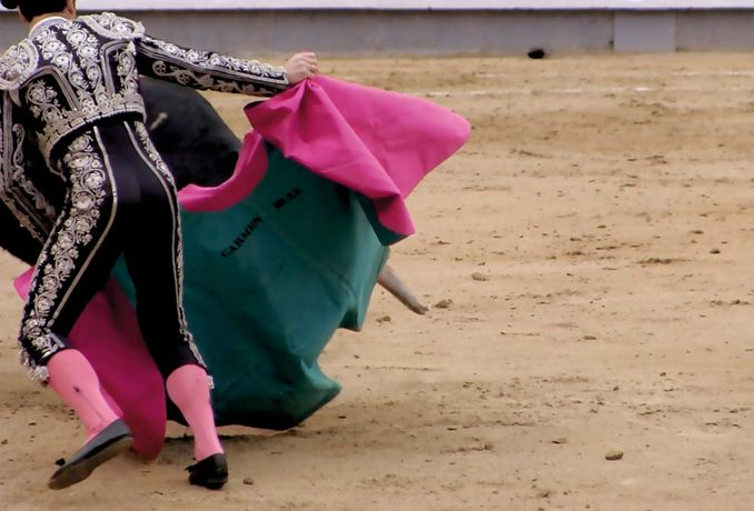 Rosie Morris. Bullfight