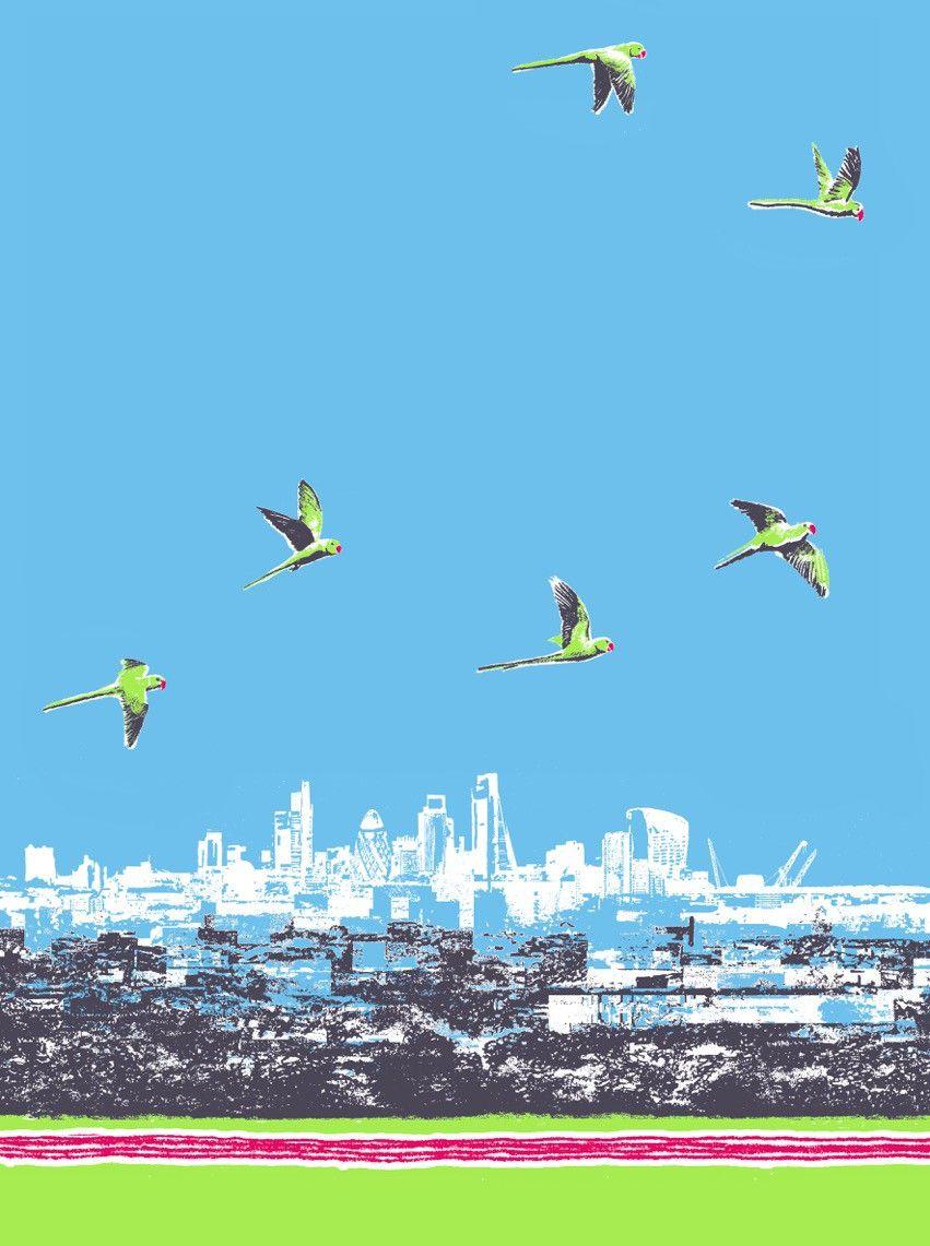 Art Events Calendar London : London birds by emma reynolds exhibition at ply gallery