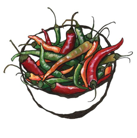 Chillies by Lucy Routh