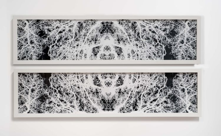 Caroline Jane Harris, Harmonic Landscape, 2013, hand-cut layered pigment prints on matt paper, 137 x 193 cm.