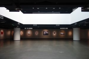 The Priseman Seabrook Collection of 21st Century British Painting: Exhibition in China.