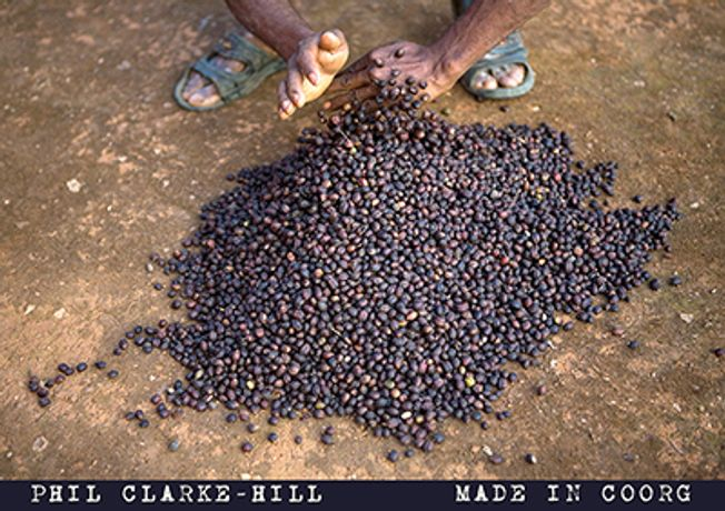 Made in Coorg - The Story of Indian Coffee: Image 0
