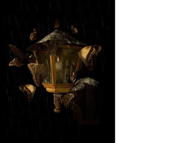 Magic Lantern by Mat Collishaw: Image 0