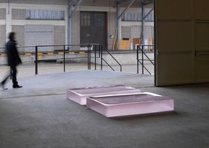 Two Pink Tons — Roni Horn, 2008
