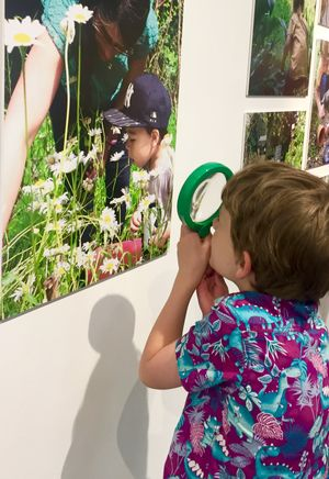 A young visitor exploring the exhibition