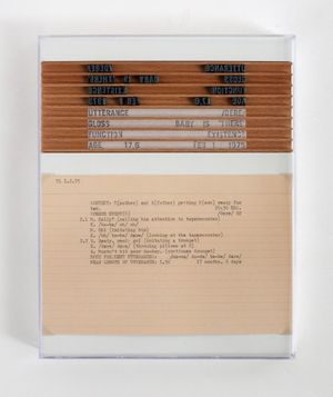 Mary Kelly  Detail: Post-Partum Document: Documentation II, Analysed Utterances and Related Speech Events (second version), 1975/2016  perspex, white card, wood, paper, ink, rubber, 26 units 25.5 x 20.5 cm, 10 x 8.1 in each H6941