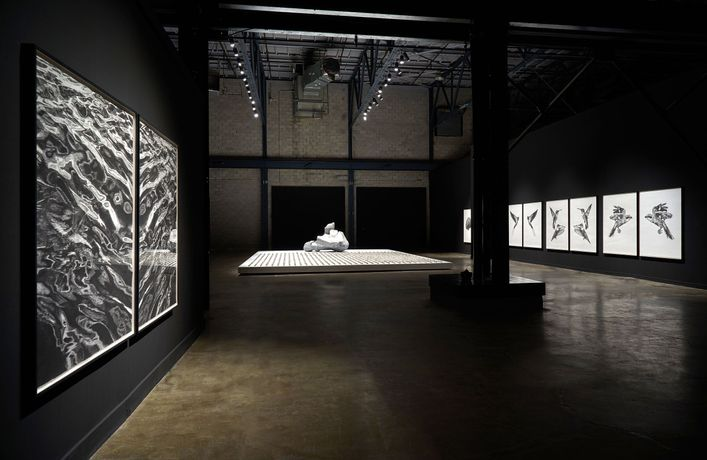 Installation view (Photo credit: Romain Guilbault)