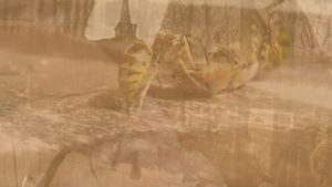 Mauro Bonacina, The birds and the bees (film still), 2017. Video projection, 1 minute and 31 seconds. Courtesy of Roman Road and the artist. © Mauro Bonacina