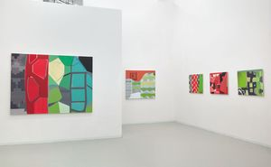 Mike Childs  The Journey: Grids, Color and Curvilinear forms, 2004 to 2020