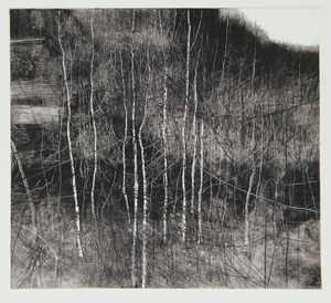 'Quarry Trees III' monoprint by David Parfitt RI