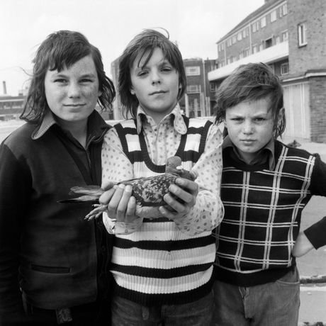 Daniel Meadows National Portrait (Three Boys and a Pigeon) 1974. Courtesy the artist.