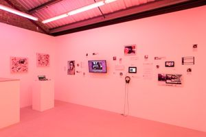 Installation view, Molly Soda, 'Comfort Zone', at Annka Kultys Gallery, London 2016