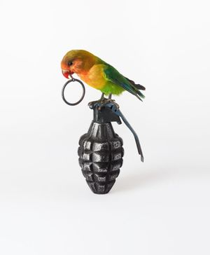 Nancy Fouts, Lovebird with Grenade, 2012, Taxidermy lovebird, cast resin hand grenade