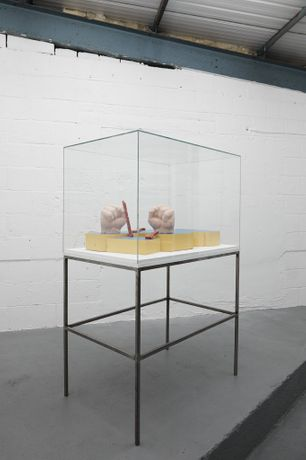 Nomadic Vitrine: Liam Fallon, Installation View, Recent Activity, Birmingham, 2017 © Recent Activity, Liam Fallon