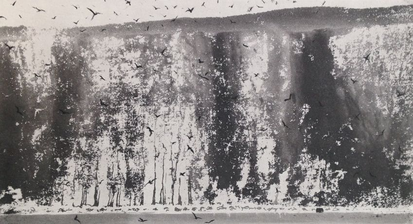 Norman Ackroyd, Bempton Cliffs (detail), Etching