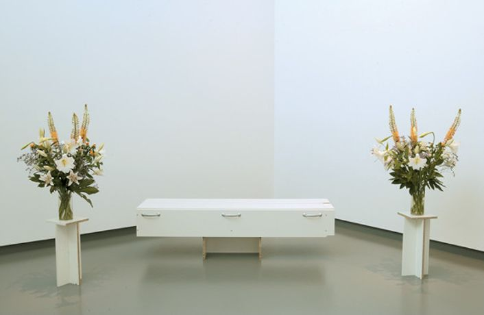 Joe Scanlan, DIY (2003), Ikea parts, flowers.
