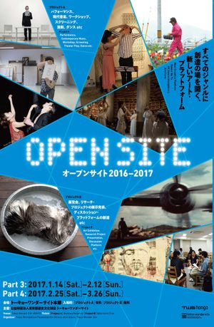 OPEN SITE 2016-2017 Part3 Project B