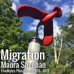 Opening: Migration by Maura Sheehan