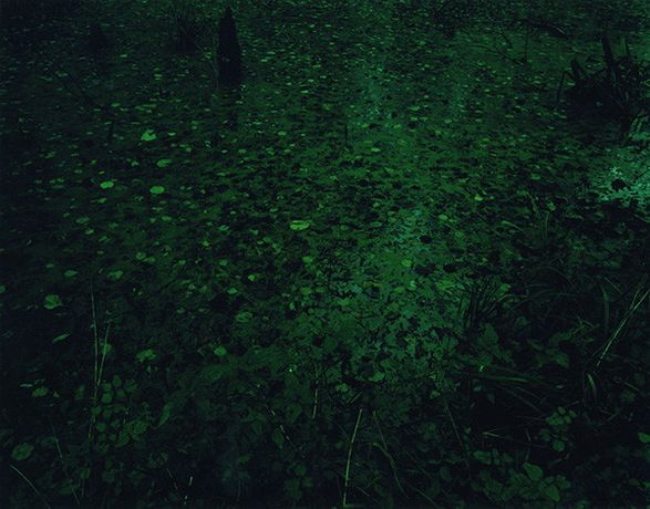 Ori Gersht. sleepless nights