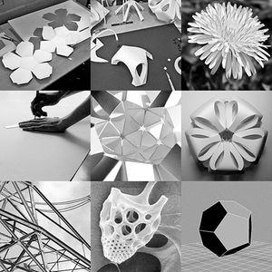 Paper Construction: One-day Paper Sculpture Workshop