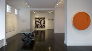 Paradigm Shifts exhibition features Charles Arnoldi, Ricardo Mazal and Manuel Mérida