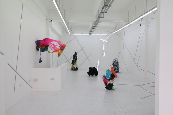 The Shape of Things to Come, installation view (2015)