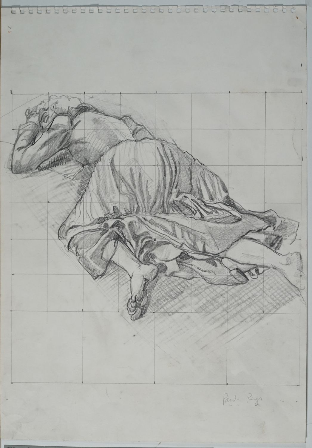 paula rego from mind to hand drawings from 1980 to 2001