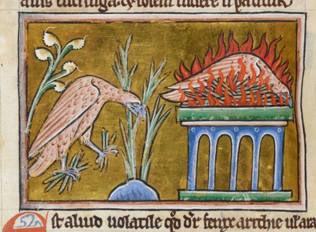 Phoenix courtsey British Library Text