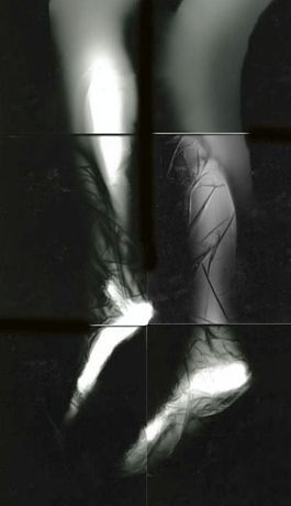 Photogram Open 2014: Image 0